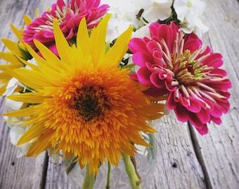 Garden Seed Kit, Cut Flower Garden Seeds, Garden Supplies in Gift Box, Grow Your Own Cut Flower Garden, Heirloom Flower Seeds