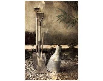 Italian Garden Photo, Chianti Vineyard, Wabi Sabi, Yard Tools, Muted Colors, Rustic Scene, Tranquility
