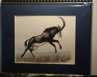 Sable Antelope Bull - Original Watercolour (matted, unframed)