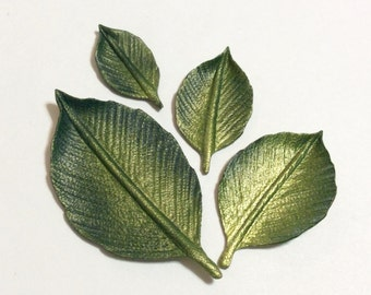 "One 2"" metallic shaded leather steam leaf."