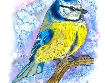 Blue Tit, Limited Edition Print