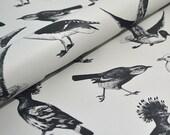 Decorative paper - Birds