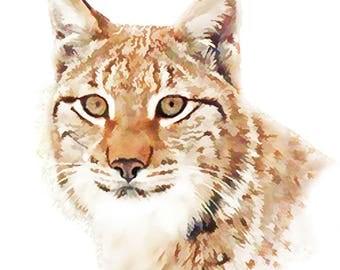 animal print, lynx print, wildlife print, Iain S Byrne, nursery print, digital art, childs wall art, animal art, nursery art, nature print