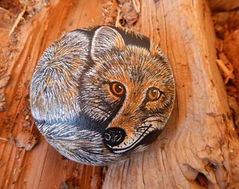 Coyote Painted Rock Art, Coyote Painting, Coyote Art Painted Rock, Coyote Painted Stone