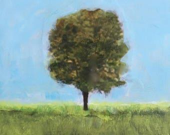 Blue Sky, One Tree
