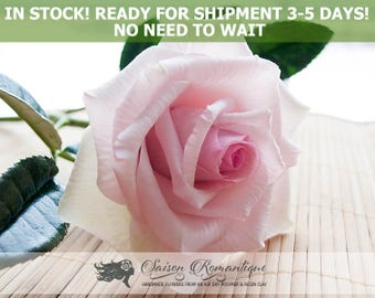 Ready for shipment - Light Pink Rose Belmonte - Polymer Clay Flowers