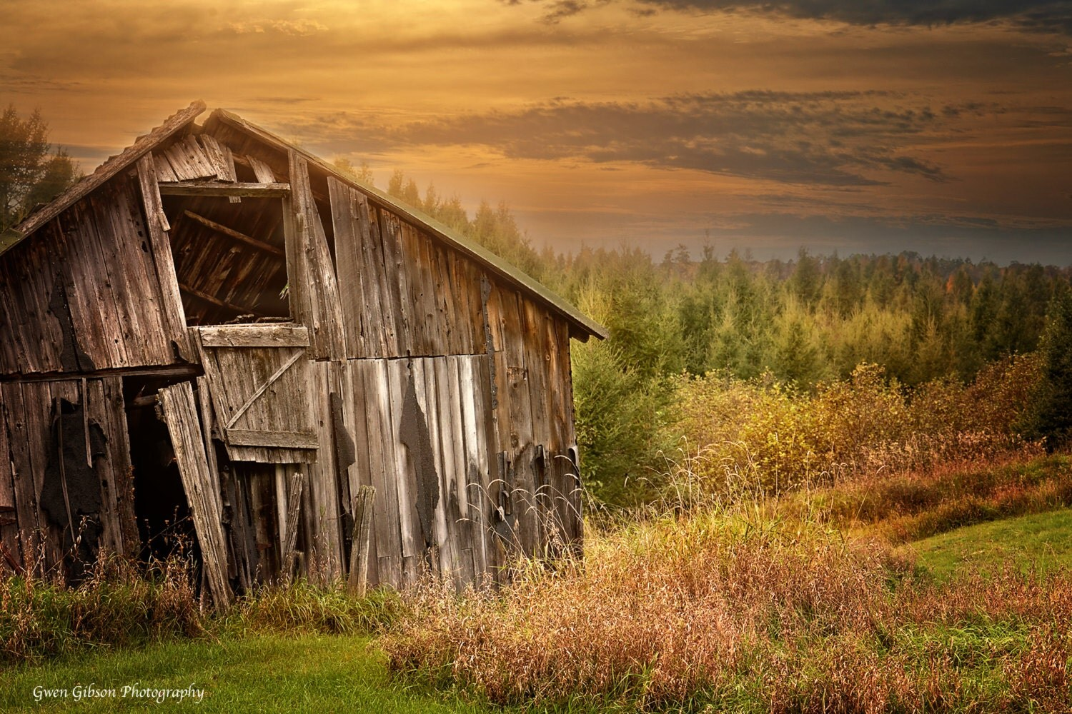 Sale old barn photography michigan fall colors for Fine art photography sales