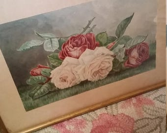 Antique Watercolor Roses