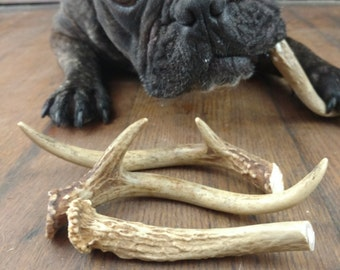 Deer Antler Dog Chews, natural toys for dogs, small medium and large size
