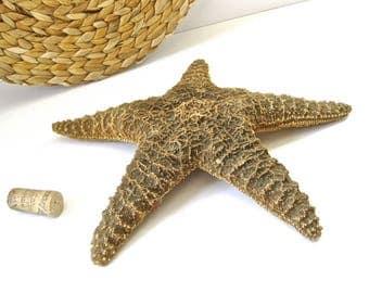 "Vintage X-Large Starfish • Giant 12"" Sea Shell • Coastal Beach Ocean Decor"