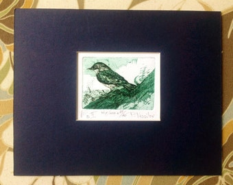 Original Art Print- BIRD II - Drawn and Hand Pulled Etching/ Aquatint