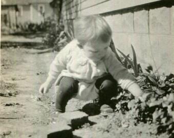 Vintage Photo..Strawberry Picker, 1920's Original Found Photo, Vernacular Photography