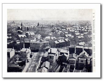 New Brunswick NJ, Bird's Eye View 1906 Vintage REPRO Postcard R371530
