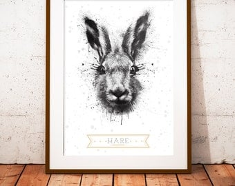 Hare - limited edition print 210 x 297 mm, numbered and signed