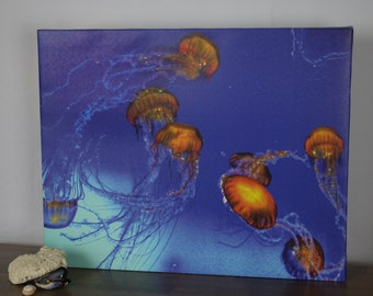 Jellyfish in Orange and Blue, Original Photograph on Canvas, 16x20, one-of-a- kind original