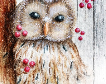 Weathered Winter Owl