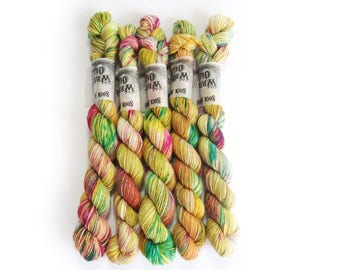 Sock Yarn Mini's Superwash Merino/Nylon 85/15 4ply Handdyed Yarn: ORIENT EXPRESS
