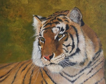 Pensive tiger.