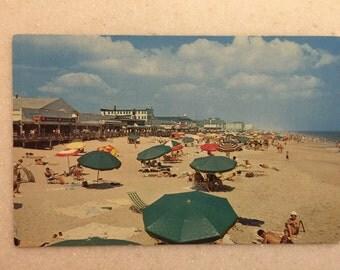 Rehoboth Beach Delaware Postcard Fun in the Sun on the Beach