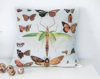 "50 cm x 50 cm ""Wings"" pillow"