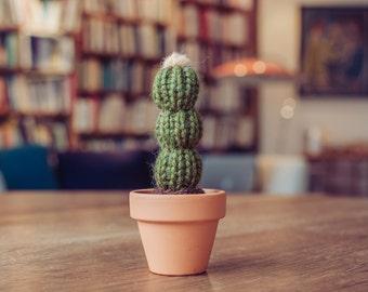 """4.25"""" Flowering Knitted Cactus - Mini Cactus, Knit Cactus, Crochet Cactus, Amigurumi, cactus toy, plush cactus, stuffed cactus, cactus art"""