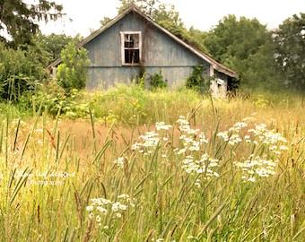 Shaw Barn in the Summer Sutton, MA