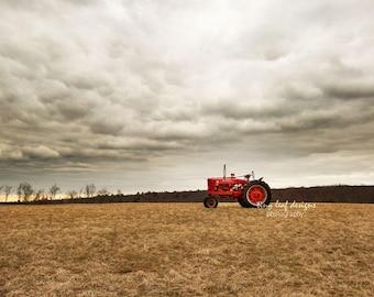 Farmall Tractor in Field Farm Fine Art Photograph 10 x 20