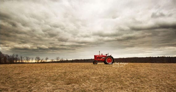 Farmall Tractor in Field Photograph 10 x 20 or Standout 10 x 20