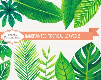 BUY 2 GET 1 FREE Hand Painted Tropical Leaves Clip Art 2 - watercolor leaf clipart - palm monstera sansiviera banana -Commercial Use Ok