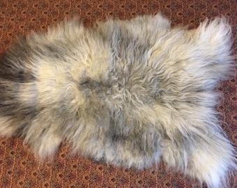 Icelandic/Shetland cross Sheepskin