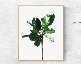 Palm Leaf Print, Tropical leaf, Wall art Prints, Leaf Print Download, Palm Art Prints, Printable Leaf Art, Tropical Leaf Print, Palm Print