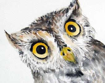Summer Sale-Owl,Original Watercolor Painting,Bird Painting 11x12in