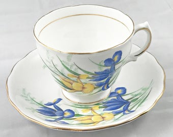 Vintage Royal Vale Iris Cup and Saucer Bone China Teacup Made in England