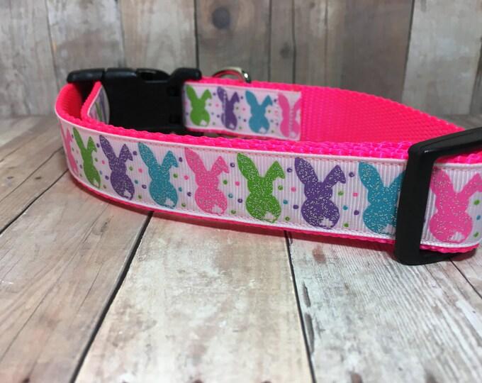 """The Cottontail   Designer 1"""" Width Dog Collar   CupcakePups Collars   Easter  Bunny - Medium/Large Dog Collar"""