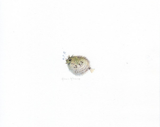 Original Miniature painting of a Blow Fish. Tiny painting, Blow Fish art 5 x 5