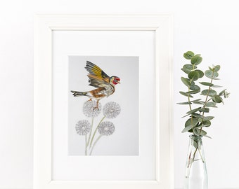 Goldfinch on dandelions - Irish Wildlife Collection, Giclee Print