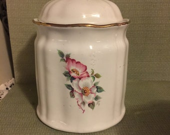 Cookie Jar/Canister Handpainted by House of Webster; Porcelain Jar/Canister; Vintage Jar