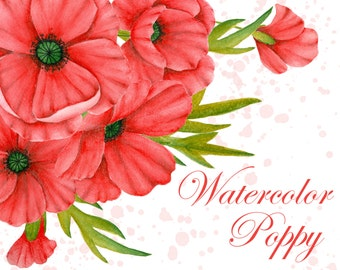 Watercolor poppy clipart, Red poppies clipart, Red flowers clipart, Floral illustrastion, Hand painted flower, Poppy illustration