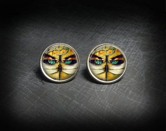 Dragonfly Insect Studs Dragonfly Bug Earrings Studs - Dragonfly Bug Jewelry Insect Studs - Dragonfly Insect Art Studs - Dragonfly Bug Studs