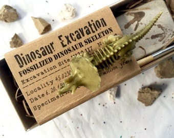 Dinosaur Excavation Kit, Dinosaur Favor