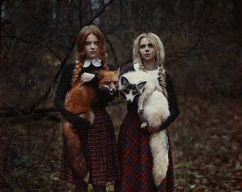 50 % OFF 8 X 10 PRINT creepy BEAUTIFUL foxes photography dark art