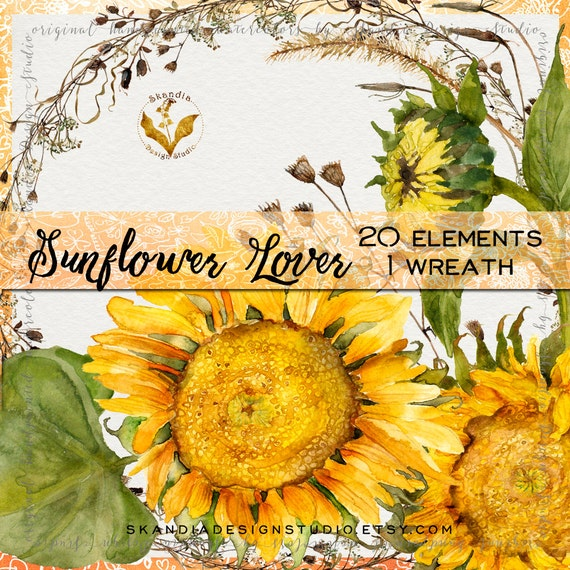 Watercolor Sunflowers Sunflower Clipart Fall Flowers Floral From