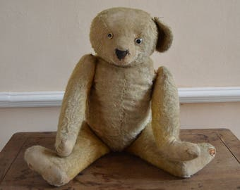 Huge Antique Teddy Bear, 70 cm tall, Mohair, Curved Paws, Early 1900s, Original Nose and Paw Stitching