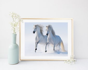 Horse Art Print, Equestrian Print, Horse Photo, Printable  Horses, White Horses,  Instant Download,  Wall Decor, Home Decor, Gallery Wall