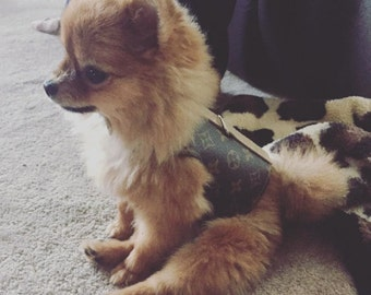 The Louis V:  Louis Vuitton Pet Harness