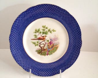 """Allerton's Scale Border 9"""" Luncheon Plate with Bird Center; Vintage"""