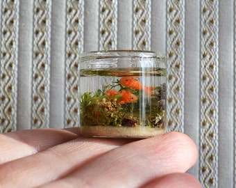 Dollhouse Miniature aquarium, goldfish aquarium, 1:12 scale, scale Miniature, scale one inch, aquarium for dollhouses,