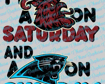 I'm A Gamecock on Saturday and a Panthers on Sunday SVG