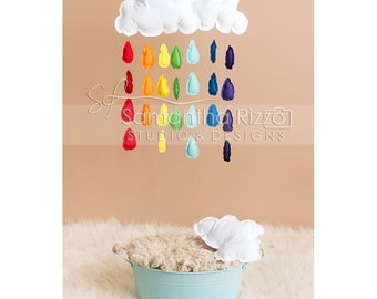 Digital Newborn Photography Background - Rainbow Baby Photography Backdrop (Set of 4)
