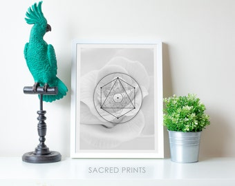 White Rose Digital Print, White Flower Poster, Metatron Symbol Art, Minimalist Rose Print, Monochrome Floral Decor, Simple Gift, Interesting